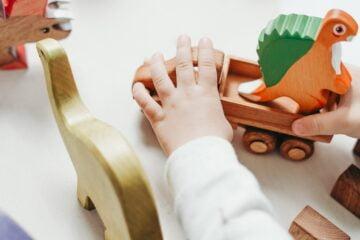 Care sunt beneficiile de a cumpara jucarii de lemn de pe site-ul Rici Pici